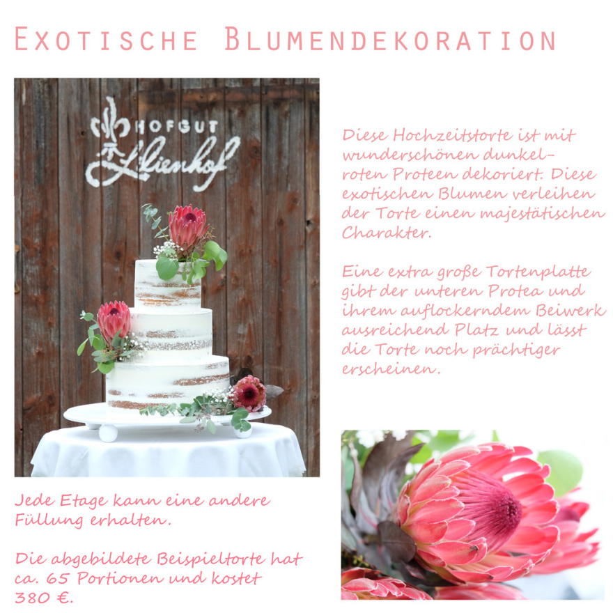 Naked Cake Protea